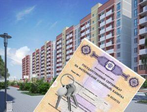 Как оформляется покупка квартиры по материнскому капиталу